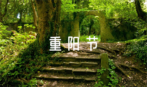 最新2021年重阳节活动方案通用版范文六篇